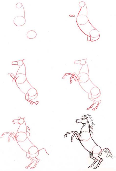Dessiner un cheval cheval cabre - Comment dessiner un cheval au galop ...